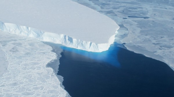 Sea Levels Could Rise by 4 Feet as Melting of West Antarctic Glaciers Appears Unstoppable says New Study