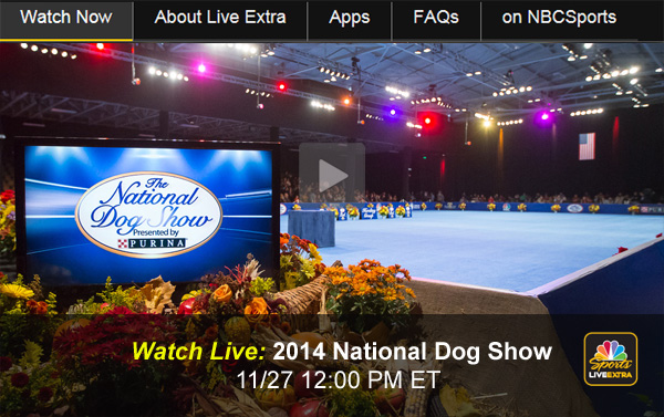 How To Watch The  National Dog Show Online Free
